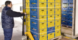 Packing & stuffing of chilled commodities