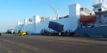 Sudah Ada Kapal Angkut Sapi, Ternyata Pasokan Belum Lancar